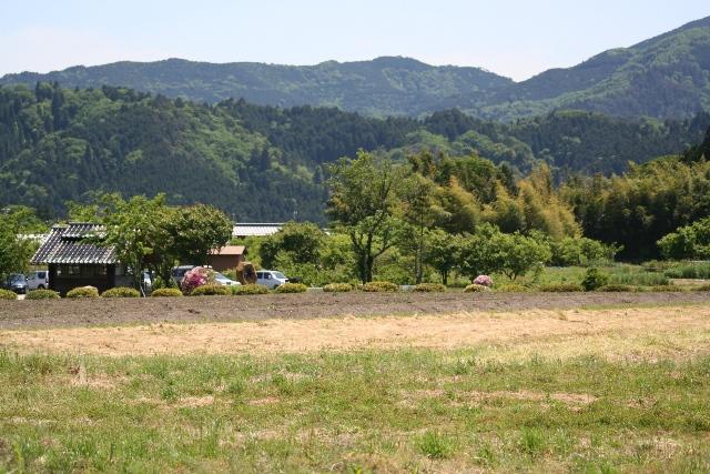 Sekigahra