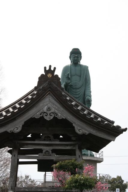 Daibutu_1566