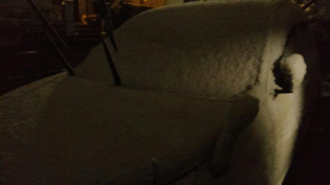 朝から降り続いた雪