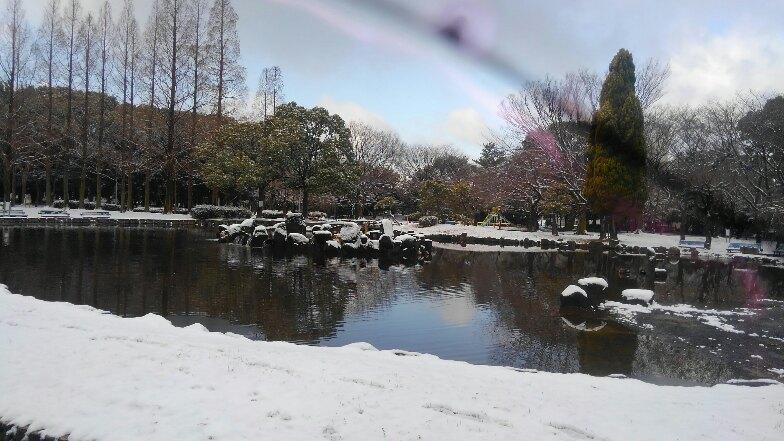 はっとする雪景色