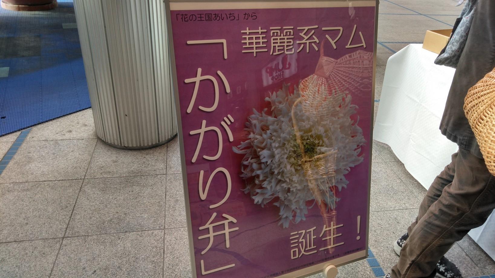 菊の寄せ植え